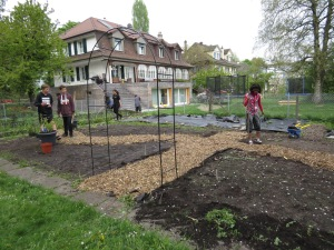 ELC Garden transformation nearly complete!